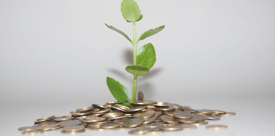 sfera finansow darmowe chwilkowki