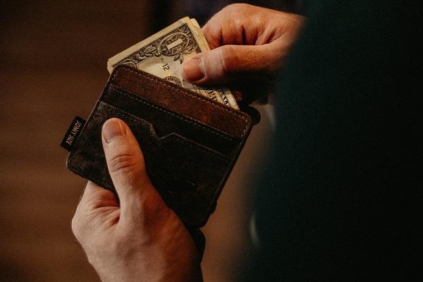 portfel i dolar